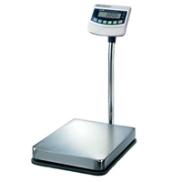 cas 300 lb bench scale