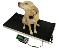 700lb Animal Weighing Scale